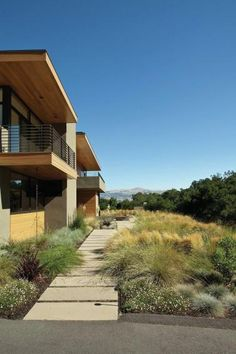 Water Wise And Naturally Beautiful | Builder Magazine | Design, Green  Building, San Francisco