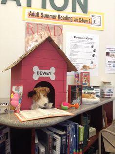 """Summer Reading Program 2014 """"Paws to Read!"""" at Rancho Santa Margarita Library."""