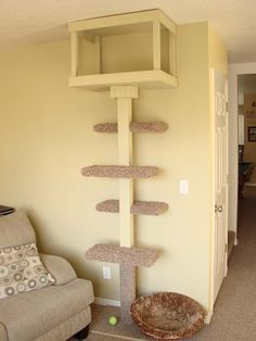 Get Scatty: A Cat Tree, & A Christmas Tree. #catcareideas