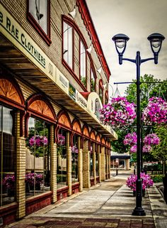 Part of a downtown area in RED DEER, ALBERTA - lovely vintage lamp posts with hanging baskets of gorgeous colored flowers.