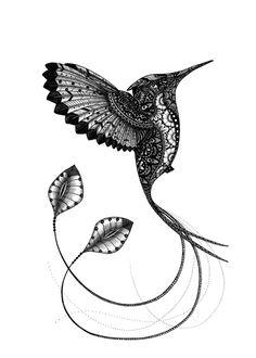 humming bird. animals series https://www.behance.net/eivanafer51df
