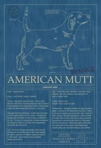 131 best dog blueprints images on pinterest best dogs dog breeds animal blueprint company american mutt 07 dog print blue printsdog malvernweather Image collections