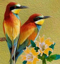 It's a beautiful world! Bird Painting Acrylic, Watercolor Bird, Oil Pastel Drawings, Bird Drawings, Pretty Birds, Beautiful Birds, Beautiful Nature Wallpaper, Beautiful Nature Pictures, Australian Birds