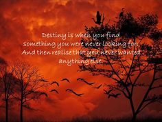 Destiny is when you find something....