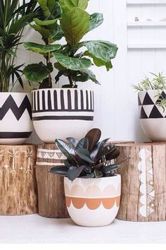 Pop and Scott pots - Deko Pins Painted Plant Pots, Painted Flower Pots, Pop And Scott, Cactus Y Suculentas, Diy Décoration, Pottery Painting, Plant Decor, Boho Decor, Indoor Plants
