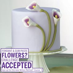 Learn how to enhance your fondant and gum paste skills in the new Course 3. Find a class near you today!