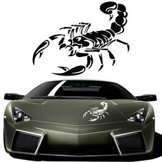 3D Scorpion Car Sticker (4 colors) //Price: $7.99 & FREE Shipping //     #love #instagood #me #cute #tbt #photooftheday #instamood #iphonesia #tweegram #picoftheday #igers #girl #beautiful #instadaily #summer #instagramhub #iphoneonly #follow #igdaily #bestoftheday #happy #picstitch #tagblender #jj #sky #nofilter #fashion #followme #fun #sun #SuperBowl #Phone iHeartAwards #Nice #photo