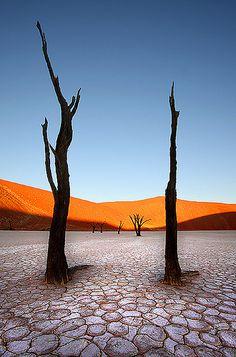 Dead Vlei, Namib Desert, Nambia, Africa,
