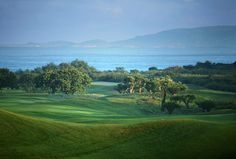 Costa Navarino is offering a world-class golf experience with its signature golf cources in Greece. See what our courses include. Public Golf Courses, Best Golf Courses, Golf Now, Coeur D Alene Resort, Augusta Golf, Golf Course Reviews, Golf Tips For Beginners, Golf Quotes, Golf Lessons