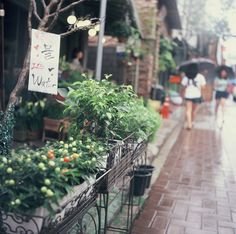 A rainy day in 삼청동