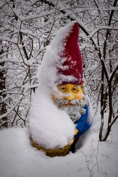 A tropical garden gnome is a special variation of the being used to decorate gardens or backyards. They vary a lot from the regular gnomes. I Love Winter, Winter Fun, Gnomes Book, Yard Gnomes, Elves And Fairies, Gnome House, Woodland Theme, Gnome Garden, Winter Garden