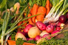 hardy vegetables