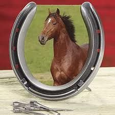 horseshoe frame. i need to make this :)