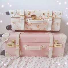 My Liz Lisa suitcases