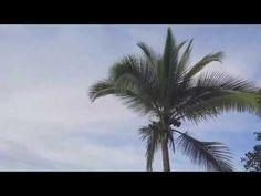 Costa Rica Beach Best Beaches In