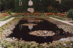 Botanischer Garten München (by ingeborg klarenberg)