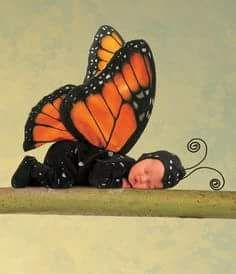"11/"" x 14/"" MONARCH BUTTERFLY Anne Geddes newborn babies chrysalises"
