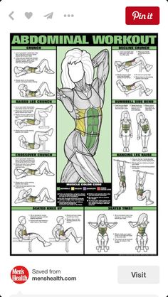 home gym exercises wall chart universal equipment