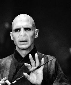 I might be insane for saying this, but I actually find Voldemort in his serpentine form mildly attractive. Of course, it doesn't compare to my mental image of him when he was younger and infinitely more handsome.