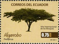 Issued in 2011, Ecuador - International Year of Forests - Prosopis sp.