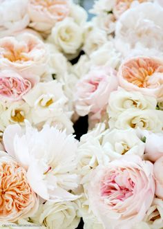 Blush Peonies, Peach David Austin Garden Roses, Light Pink Garden Roses, and Majolica Spray Roses