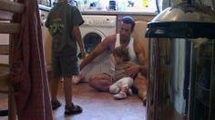 Cine e seful in casa? - sambata, 25 ianuarie, 20:00 Romania, Home Appliances, House Appliances, Appliances