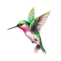 Watercolor Ruby Throated Hummingbird – Vinyl Decal for Car, Macbook, or Other Laptop (Many sizes ava Best Picture For Birdwatching … Hummingbird Tattoo Watercolor, Hummingbird Tattoo Meaning, Hummingbird Tattoo Black, Hummingbird Illustration, Hummingbird Drawing, Illustration Tattoo, Watercolor Illustration, Watercolor Paintings, Hummingbird Nectar
