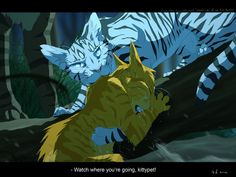 Watch where your....Warrior cats by erin hunter.Art my Mizu-no-Akira.