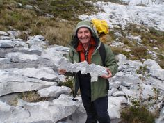 Patagonie, 2010