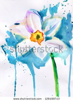 Narcissus watercolor.