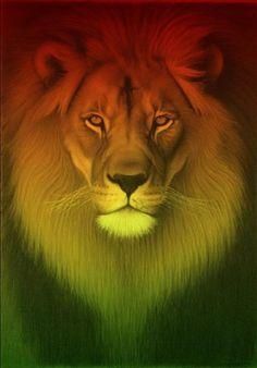 Bob Marley Lion, Rastafari Art, Rasta Art, Reggae Art, Lion Family, Nesta Marley, Rasta Colors, Lion Art, Beautiful Book Covers