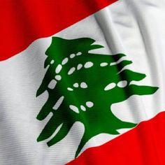The Lebanese flag !