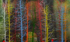 Leveled Magazine – Stanley Donwood