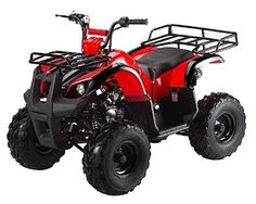 T125D Utility ATV.  A great Christmas gift idea.