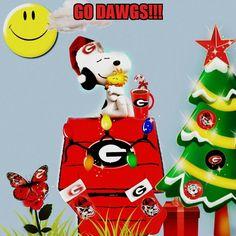 GO DAWGS!! Georgia Bulldogs Cake, Georgia Bulldog Wreath, Georgia Bulldog Mascot, Georgia Bulldogs Football, Georgia Girls, University Of Georgia, New Year Greetings, Atlanta Braves, Football Season