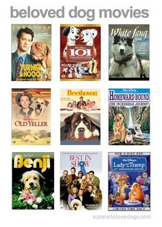 Movies to watch with your dog! Beloved dog movies via aplacetolovedogs.com #dog #movies