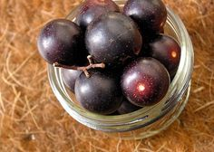 What Can I Do with Muscadine Grapes? — Good Questions
