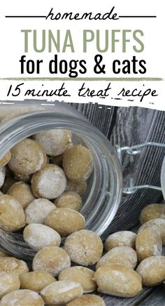 Dog and Cat Treat Recipe: It's hard to find good pet treats in the stores, but the best ones are homemade! Homemade Tuna Puffs are made without questionable ingredients. Easy Dog Treat Recipes, Homemade Dog Treats, Pet Treats, Healthy Dog Treats, Mini Cookie Cutters, Tuna, A Food, Food Processor Recipes, Cat