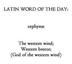 Latin: zephyrus-the western wind The Words, Words To Use, Cool Words, Latin Quotes, Latin Phrases, Unusual Words, Unique Words, Pretty Words, Beautiful Words