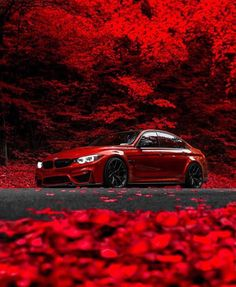 ❤️😱 Rate from 📷 Philsags —————————… – bmw Bmw Red, 3 Bmw, Sports Car Wallpaper, Bmw M3 Wallpaper, Street Racing Cars, Bmw Wallpapers, Car Backgrounds, Custom Muscle Cars, Luxury Sports Cars