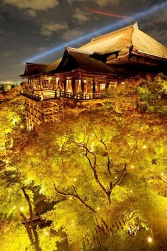 Light up the stage of Kiyomizu-dera temple, Kyoto Beautiful World, Beautiful Places, Beautiful Pictures, Kiyomizu Temple, Torre Eiffel Paris, Monte Fuji, Japanese Landscape, Sacred Architecture, Zen Gardens