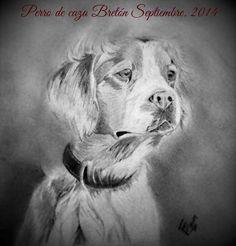 Perro de caza a lápiz, Huelva