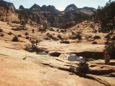 Many Pools – Zion National Park