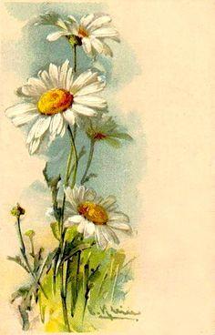 Catharina Klein (Катарина Кляйн). 1861-1929. Обсуждение на LiveInternet - Российский Сервис Онлайн-Дневников