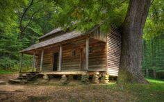 As mais belas casas na floresta 12