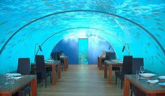 The world's first undersea restaurant opened 7 years ago at the Conrad Maldives Rangali Island, and to celebrate the anniversary the restaurant is offering guests the chance to not only eat under the sea but sleep under it as well. The 12-seat restaurant will be converted to a private bedroom suite for two, complete with private champagne dinner and breakfast in bed.