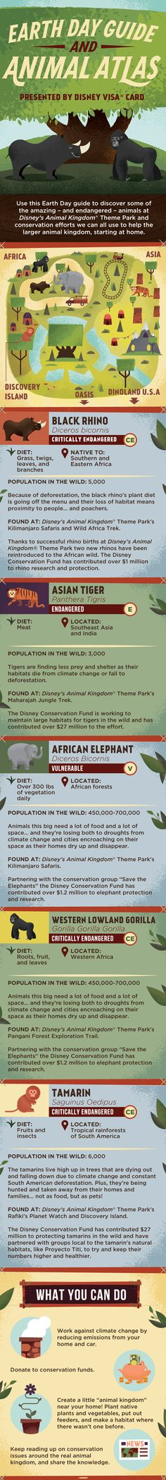 Disney's Animal Kingdom® Theme Park is more than just an exotic collection of Earth's coolest  animals... it's a helpful habitat for some of the  most endangered creatures, too. As climate  change affects species all over the world every day, it's more important than ever to make every day Earth Day. With this Animal Atlas, you can meet some animals in need, find out how Disney's Animal Kingdom® Theme Park makes a difference,and start a conservation conversation at home!