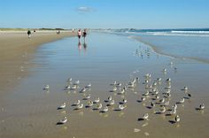 Ogunquit Beach in Maine was named one of the top 25 beaches in the U.S. by users of TripAdvisor.com.