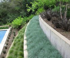 Sloped backyard landscaping creates a unique challenge. In this page, we will give some sloped backyard landscaping ideas. Modern Landscape Design, Modern Garden Design, Green Landscape, Contemporary Landscape, Landscape Architecture, Terrace Design, Contemporary Interior, Tiered Landscape, Landscape Grasses
