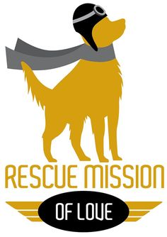 Today we share the story of Astral. Her story has a happy ending, but there are still so many Goldens that may not be as fortunate if we don't help them. Please click on the link to read Astral's 'Tail. Please donate if you can and share her story to help us raise awareness about Rescue. Thank you! #rescuemissionoflove #rescuedog #donate #adoptdontshop Telling Stories, Happy Endings, Rescue Dogs, The Fosters, Adoption, Love, Reading, Content, Elsa